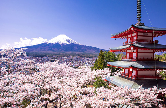 Japan-tour-cost-hotel-tourist-attractions